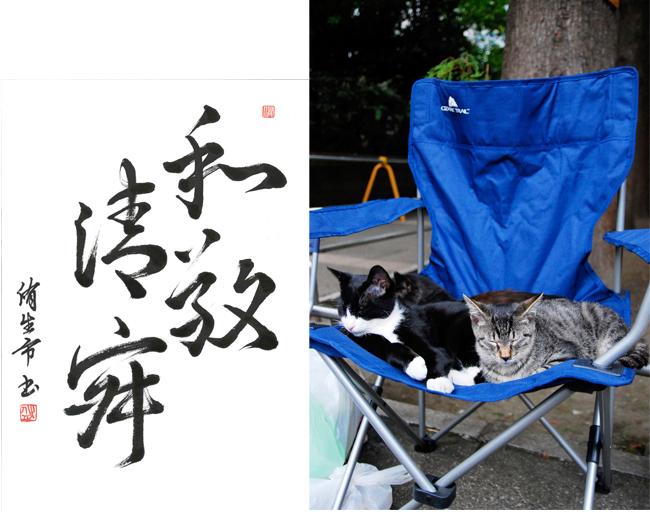 和敬清寂な猫